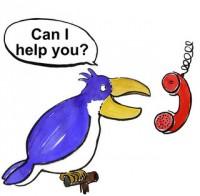 Helpdesk-Papagei